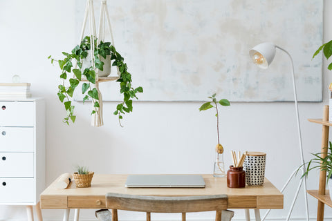 Office Desk with Hanging Planter
