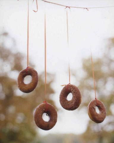 Bobbing for Donuts Halloween Party Game