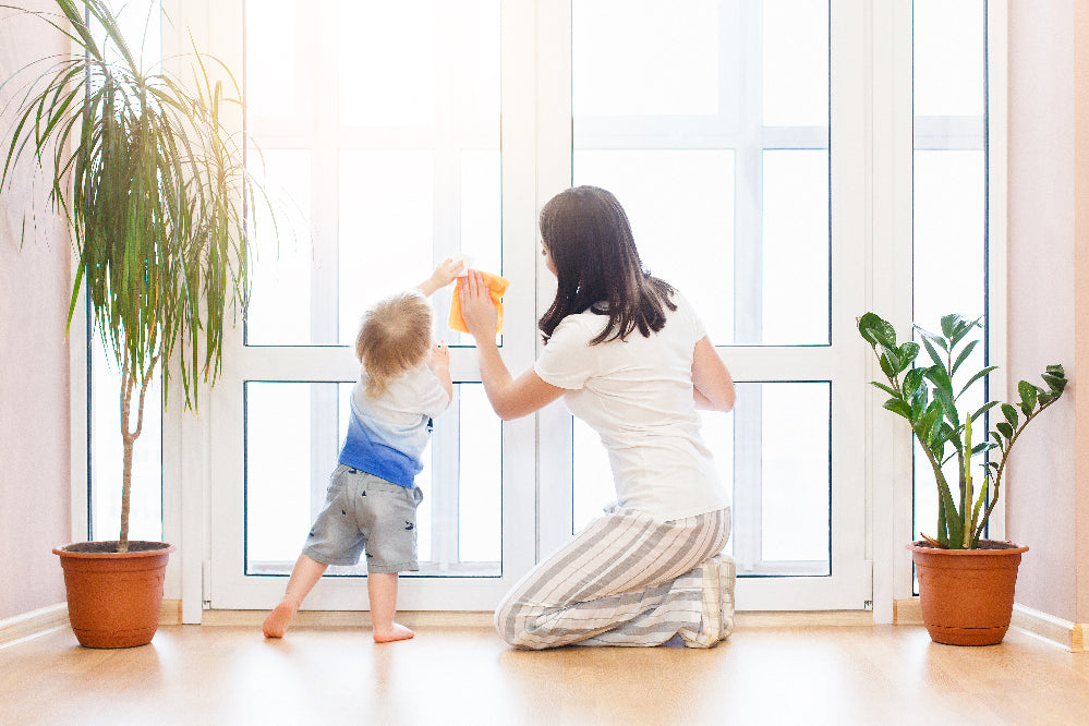 Young mom with toddler cleaning window