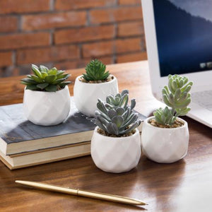 Faux Succulents in Geometric Ceramic Pots, Set of 4