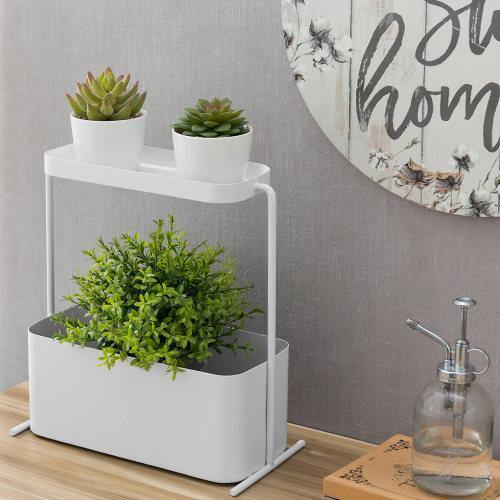 Modern White Metal Succulent Planter with Display Shelf