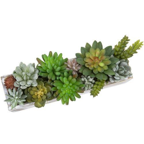 Faux Succulent Plants in Brown Whitewashed Wood Planter - MyGift