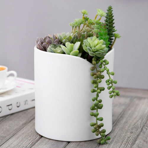 Modern White Ceramic Planter Vase w/ Tulip V-Lipped Edge
