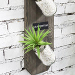 Gray Wood Mason Jar Indoor Planter Garden w/ Chalkboard Labels-MyGift