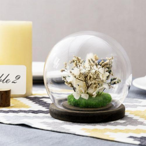 Glass Terrarium & Globe Cloche with Gray Wood Base