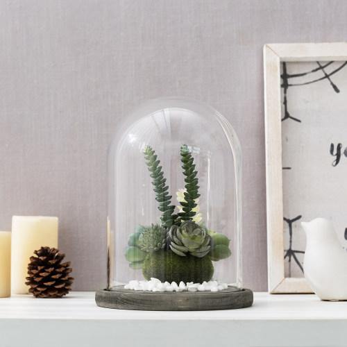 Clear Glass Cloche with Gray Wood Base