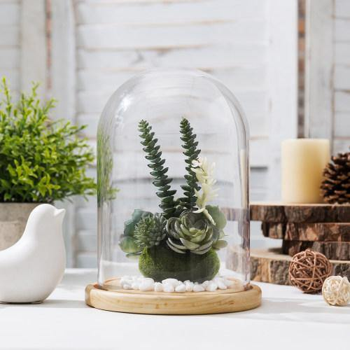 Clear Glass Cloche with Beige Wood Base