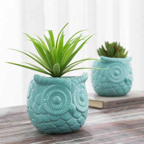 Turquoise Owl Design Ceramic Succulent Planter, Set of 2