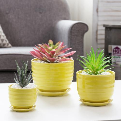 Yellow Ceramic Flower Pots, Set of 3
