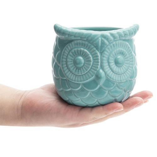 Turquoise Owl Design Ceramic Succulent Planter, Set of 2-MyGift