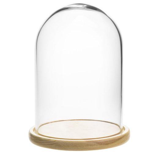 Clear Glass Cloche with Beige Wood Base - MyGift
