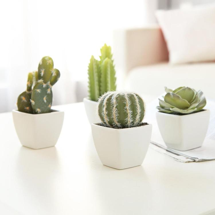 Artificial Mini Succulent & Cactus Plants, Set of 4