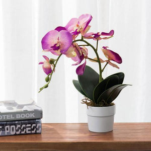 Artificial Pink Silk Phalaenopsis Orchid Flower with White Ceramic Planter