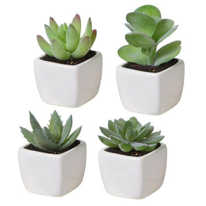 Artificial Square Succulent Planter, Set of 4 - MyGift