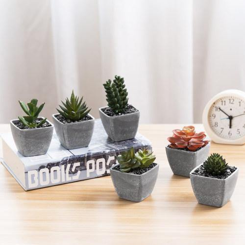 Artificial Succulent Plants in Gray Melamine Pots, Set of 6 - MyGift