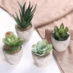 Assorted Decorative Artificial Succulent Plants with Gray Pots, Set of 4 - MyGift Enterprise LLC