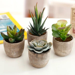 Artificial Succulent Plants with Pots, Set of 4