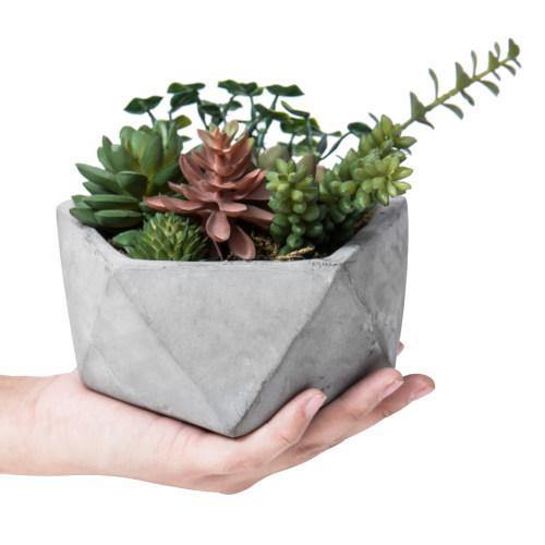 Artificial Succulents in Hexagon Cement Planter-MyGift