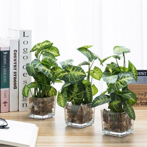 Artificial Taro Plants in Clear Vase with Decorative Stones, Set of 3
