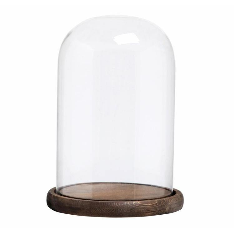 Decorative Clear Glass Cloche Bell Jar Tabletop Display Case with Wood Base - MyGift Enterprise LLC