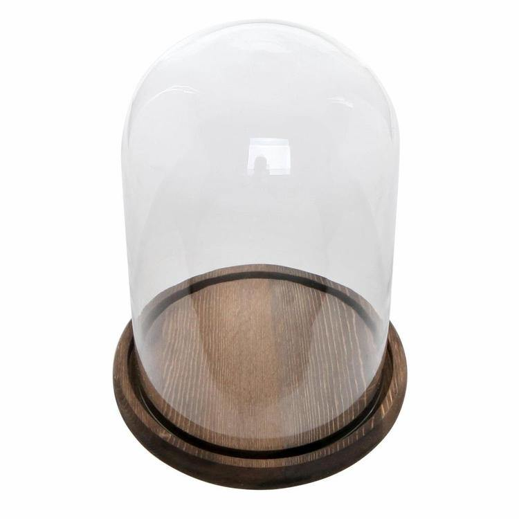Clear Glass Cloche Bell Jar Display Case - MyGift