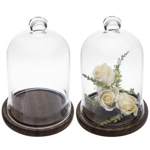 Clear Glass Cloche Display with Brown Wood Base, Set of 2
