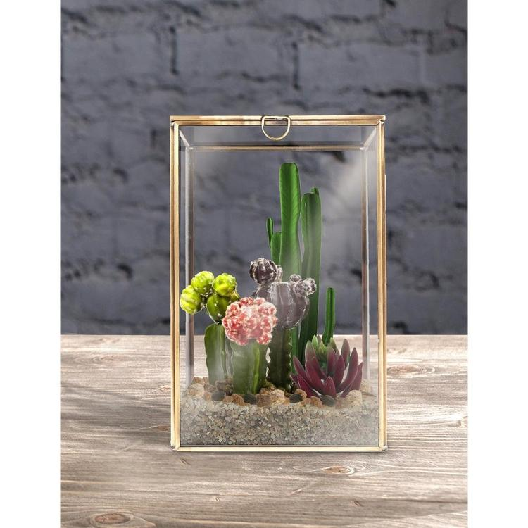 Clear Glass Plant Terrarium with Brass Metal Frame