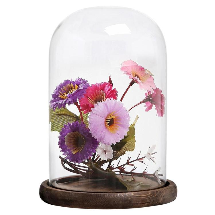 10 x 7 Inches Clear Glass Cloche Bell Jar Display Case with Round Wood Base, Set of 2 - MyGift Enterprise LLC