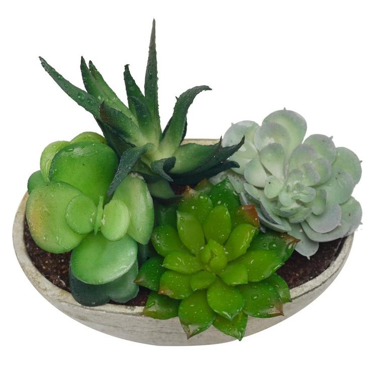 Decorative Artificial Succulent Plant Arrangement with Oval Gray Pot - MyGift Enterprise LLC