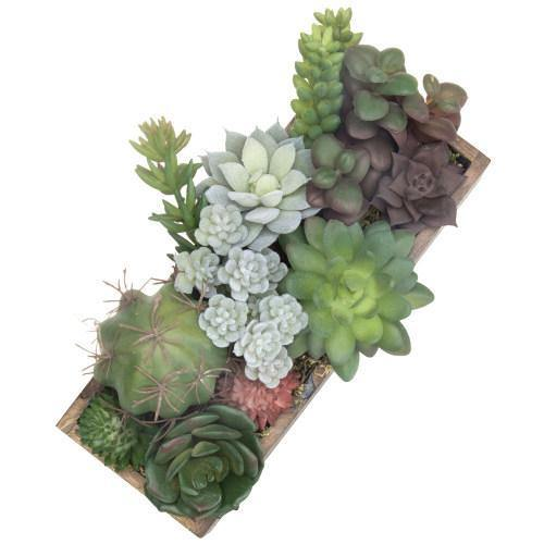 Faux Succulent & Cactus Plants in Rectangular Dark Wood Planter - MyGift