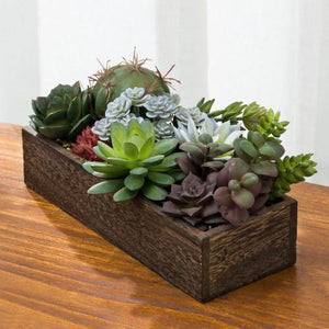 Faux Succulent & Cactus Plants in Rectangular Dark Wood Planter
