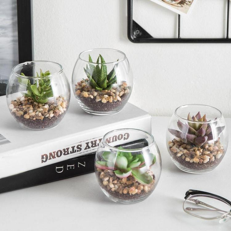 Mini Clear Artificial Plant Glass Display Vases, Set of 4