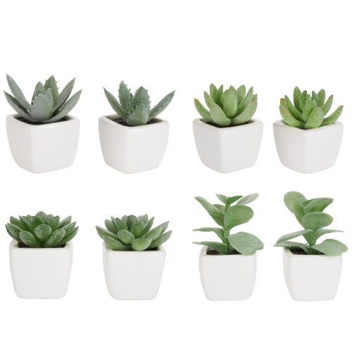 Mini Faux Succulent Plants, Set of 8-MyGift