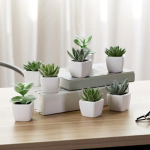 Mini Faux Succulent Plants, Set of 8