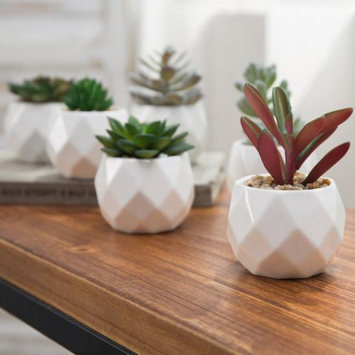 Mini Faux Succulents in Geometric Pots, Set of 6