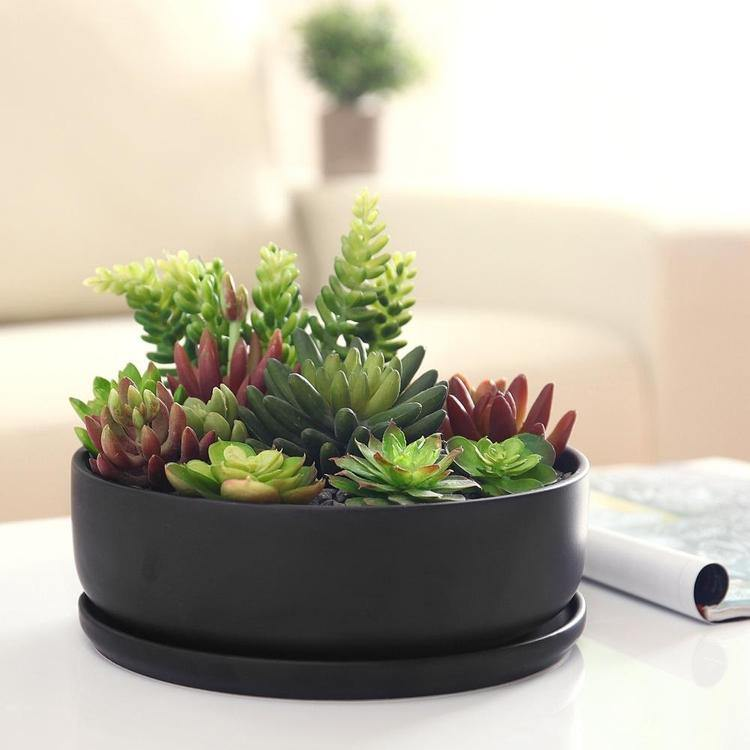 Modern Round Black Ceramic Succulent Planter with Saucer - MyGift