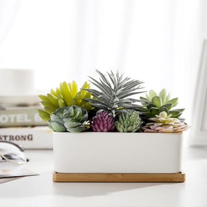 Potted Artificial Succulents in Ceramic Planter with Bamboo Tray