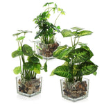 Set of 3 Artificial Plants, Faux Tabletop Greenery w/ Clear Glass Pots - MyGift Enterprise LLC