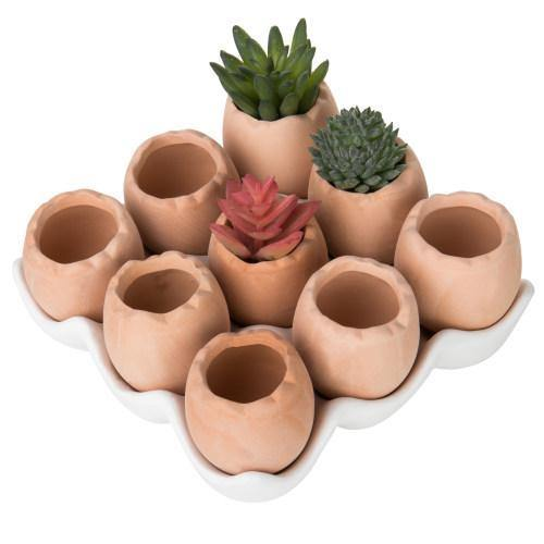 Set of 9 Brown Egg Design Ceramic Succulent Planters w/Tray - MyGift