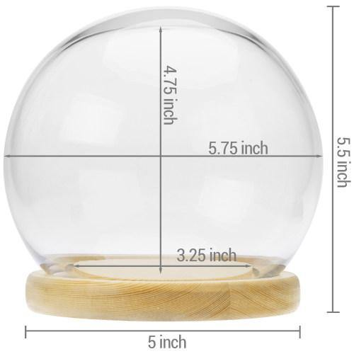 Glass Terrarium & Globe Cloche with Natural Beige Wood Base - MyGift