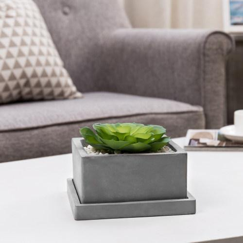 Square Cement Succulent Planter Pot with Removable Saucer