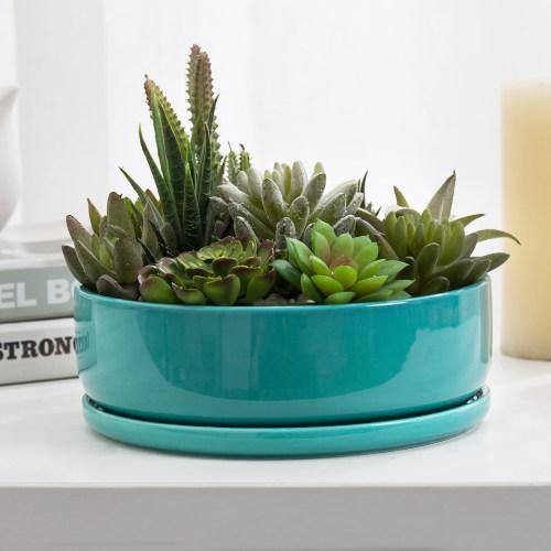 Turquoise Ceramic Succulent Planter with Removable Saucer