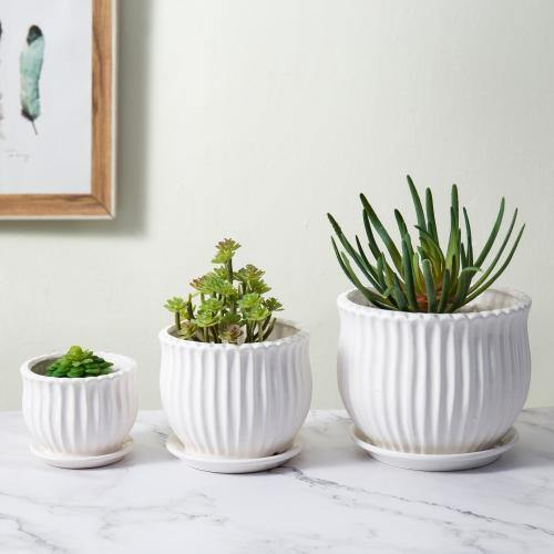 White Ceramic Pots with Saucers, Set of 3 - MyGift