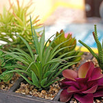 Potted Artificial Succulent Plants in Rustic Wooden 'Home' Planter Box with Rope Handles-Artifical Plants-MyGift Enterprise LLC