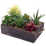 Wood Planter Box w/Artificial Succulents