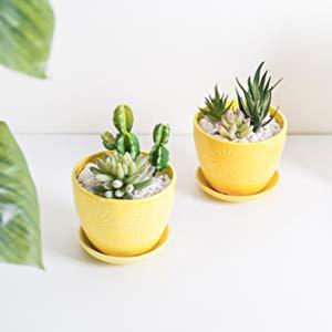Yellow Sunburst Ceramic Flower Pots, Set of 2