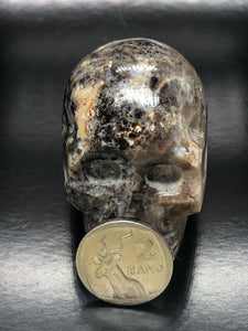 Jasper Skull ~ ascension & light work (3)