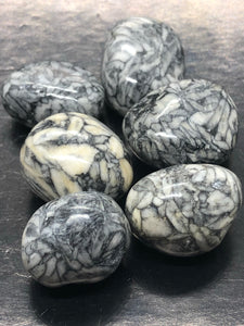 Chrysanthemum Jasper Tumbles ~ potential, calling, passion, purpose, courage & harmony