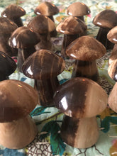 Chocolate Calcite Mushrooms ~ Grounding, fun, fantasy & earthy