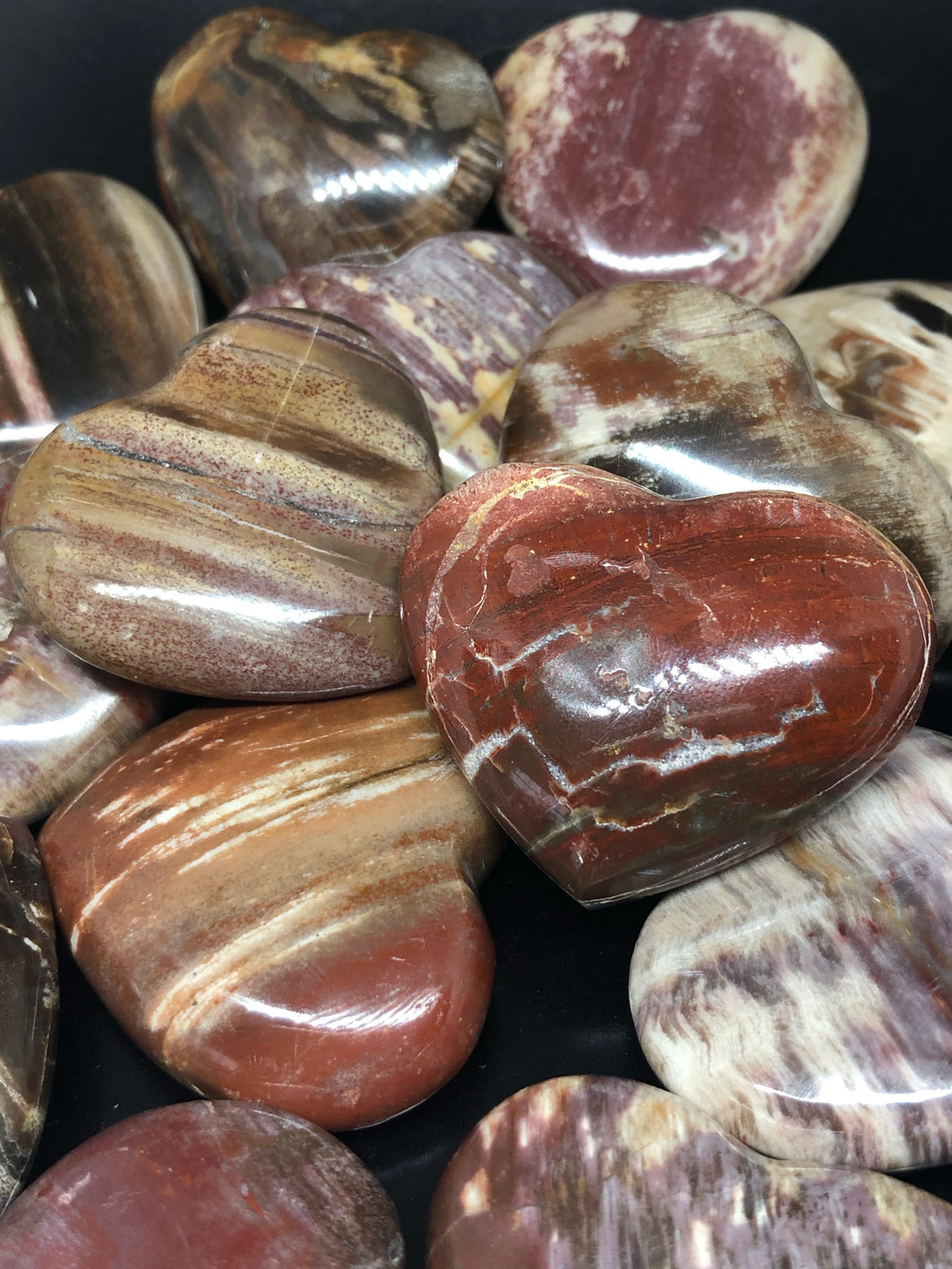 Petrified Wood Hearts (Medium) ~ grounding, integration, faith, I amness & balance